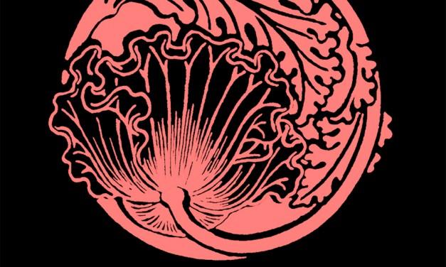 LF018 – Mirza-Zadeh – Crack Of Dawn(sup. Konrad Black,Terry Francis,UGLH,Mark Bell,Slam,Estroe…)