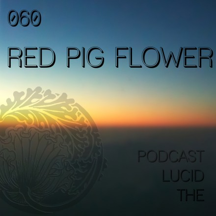 The Lucid Podcast 060 Red Pig Flower
