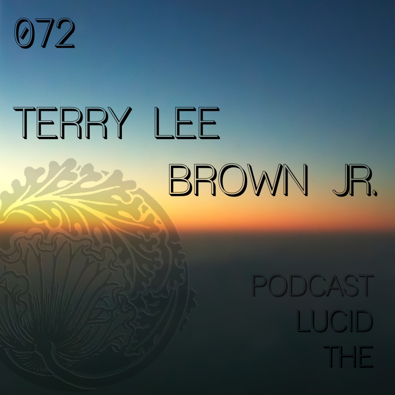 The Lucid Podcast 072 Terry Lee Brown Jr.