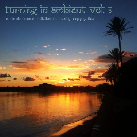 Turning In Ambient, Vol. 5
